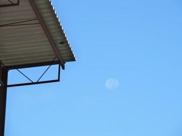 """Ustedes ya se olvidaron de la """"Super Luna""""...? Nosotros no!"""