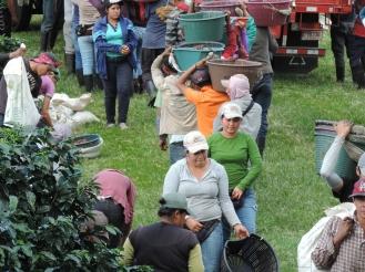 Hora de la medida - Finca La Hilda - Grupo Santa Eduviges - Costa Rica